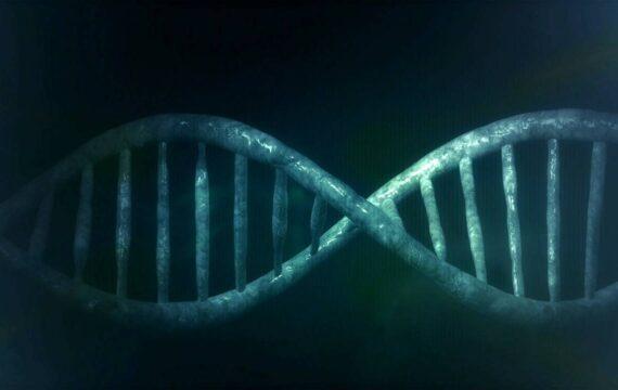 BioHackers zoeken grenzen op – Nieuwsoverzicht van 19 november