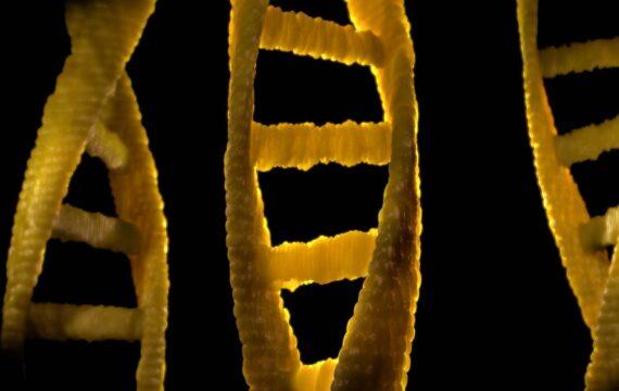 Checklist TU Delft moet gene editing met CRISP-Cas9 veiliger maken