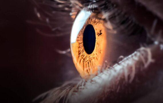 Oogziekenhuis zet AI in om glaucoom te ontdekken