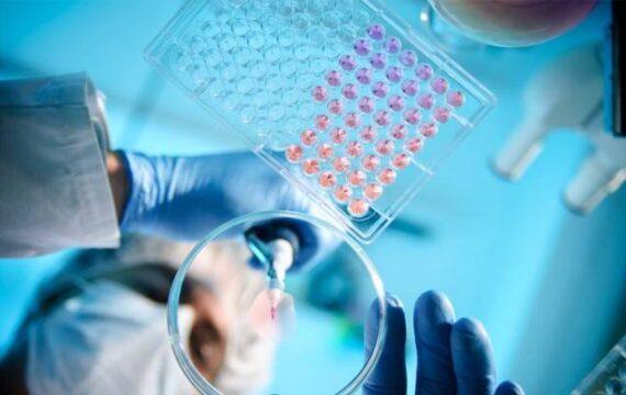 wetenschap data ICT&health