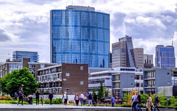 Rotterdam e-health ouderen