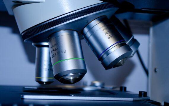 NWO kent 154 Veni-beurzen toe aan jonge onderzoekers