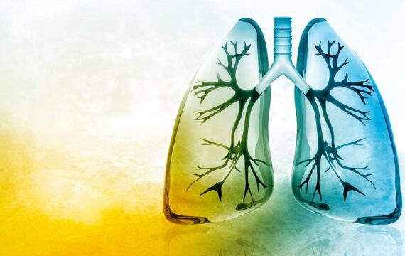 Telemonitoring voor COPD-patiënten Diakonessenhuis