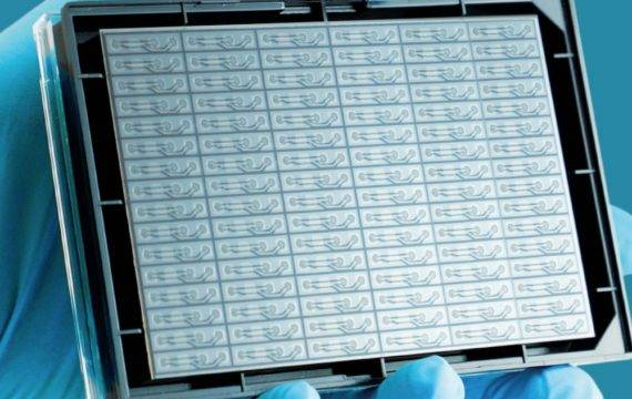 Assay Ready Organ-on-a-Chip gelanceerd