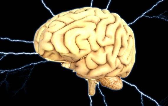 Musk: Geïmplanteerde chip kan hersenziekten genezen