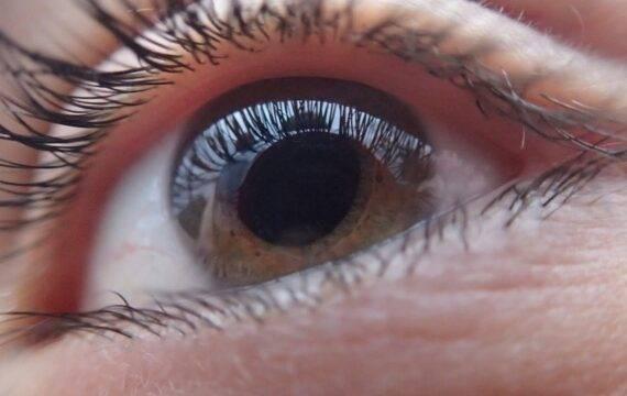 Nieuw AI-algoritme voor glaucoom diagnose